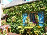 giardino-verticale-rivistaethos.it_.jpg